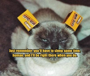 Just remember, you'll have to sleep some time, human, and I'll be right there when you do.
