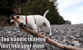 You handle that log                                     just like your mom