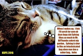 Even when sleeping, Kampers think of ways to help Sylviag.. Snookers haz a grate idea while he naps..