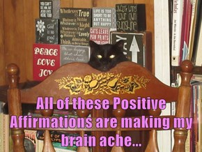All of these Positive Affirmations are making my brain ache...