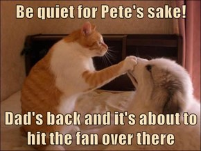 Be quiet for Pete's sake!  Dad's back and it's about to hit the fan over there
