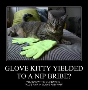 GLOVE KITTY YIELDED TO A NIP BRIBE?