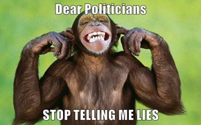 Dear Politicians  STOP TELLING ME LIES