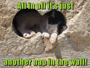 All In All It's Just Another Nap In The Wall!