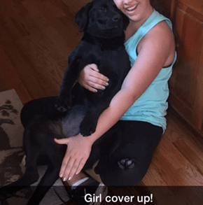 Vivian the Black Lab Has a Hilariously Inappropriate Instagram Account