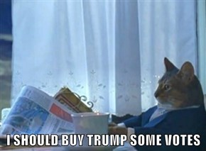 I SHOULD BUY TRUMP SOME VOTES