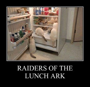 RAIDERS OF THE LUNCH ARK