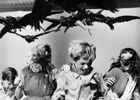 Donald believed there was good luck in bird doo doos-