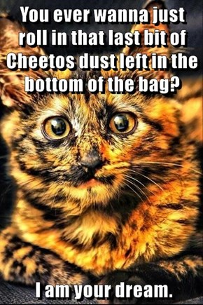 You ever wanna just roll in that last bit of Cheetos dust left in the bottom of the bag?    I am your dream.