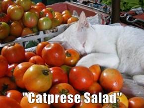 """""""Catprese Salad"""""""