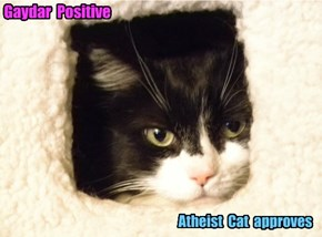 Gaydar Positive - Atheist Cat approves