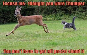 Excuse me--thought you were Thumper  You don't have to get all postal about it