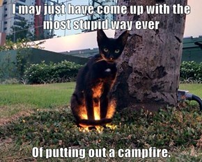 I may just have come up with the most stupid way ever  Of putting out a campfire.