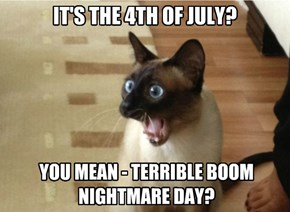 IT'S THE 4TH OF JULY?