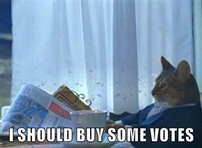 I SHOULD BUY SOME VOTES