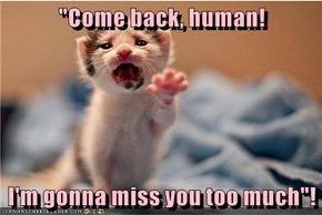"""""""Come back, human!  I'm gonna miss you too much""""!"""