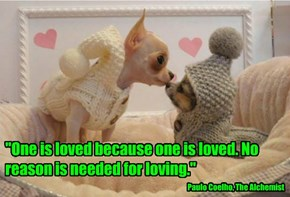 """""""One is loved because one is loved. No reason is needed for loving."""""""