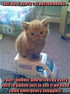 These Kitties Are Real Lifesavers!