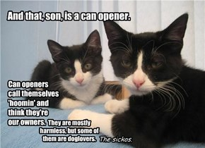 And that, son, is a can opener.