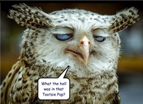What the hell was in that Tootsie Pop?
