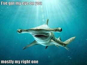 I've got my eye on you  mostly my right one