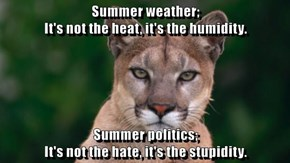 Summer weather;                                                                   It's not the heat, it's the humidity.  Summer politics;                                                                   It's not the hate, it's the stupidity.