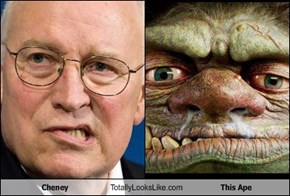 Cheney Totally Looks Like This Ape