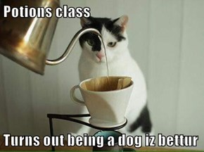 Potions class  Turns out being a dog iz bettur