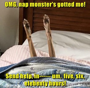 OMG, nap monster's gotted me!  Send help, in------ um,  five, six, elebenty hours!