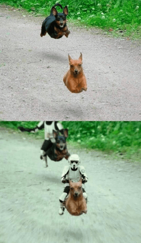 Annd They're off to the Races!