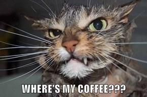 WHERE'S MY COFFEE???