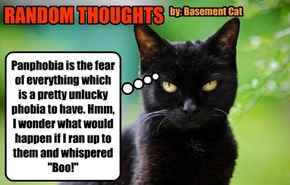 """Panphobia is the fear of everything which is a pretty unlucky phobia to have. Hmm, I wonder what would happen if I ran up to them and whispered """"Boo!"""""""