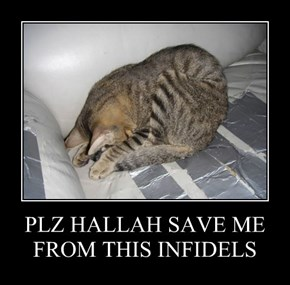 PLZ HALLAH SAVE ME FROM THIS INFIDELS