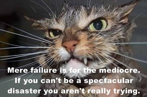 Mere failure is for the mediocre.    If you can't be a spectacular disaster you aren't really trying.