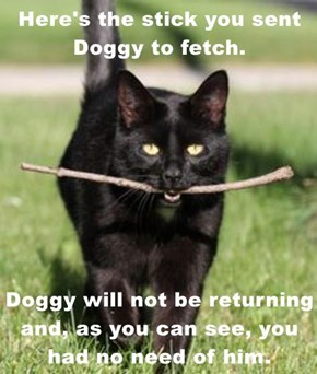 Here's the stick you sent Doggy to fetch.  Doggy will not be returning and, as you can see, you had no need of him.