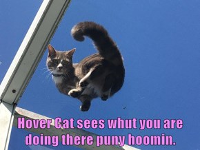 Hover Cat sees whut you are doing there puny hoomin.