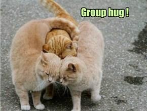 Group hug !