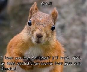 OHai!                                     I heer yoo haz Chunkles? I'll trade AWL uv dees deelishshus acorns foar juss wun                            Chunkle!