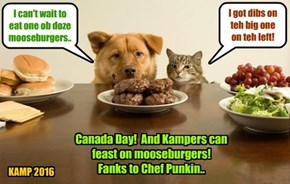 To celebrate Canada Day, Chef Punkin makes mooseburgers for all teh Kampers..