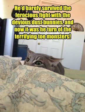 He'd barely survived the ferocious fight with the devious dust bunnies, and now it was he turn of the terrifying toe monsters!