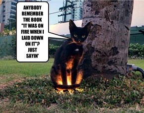 "ANYBODY REMEMBER THE BOOK ""IT WAS ON FIRE WHEN I LAID DOWN ON IT""? JUST SAYIN'"