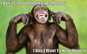 I Don't Care If Tomorrow Is Monday   I Don't Want To Hear About It