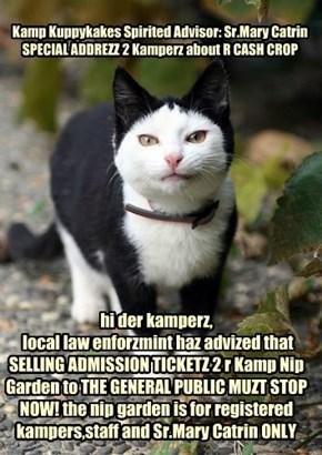 Kamp Kuppykakes Spirited Advisor: Sr.Mary Catrin SPECIAL ADDREZZ 2 Kamperz about R CASH CROP