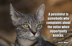 A pessimist is somebody who complains about the noise when opportunity knocks.