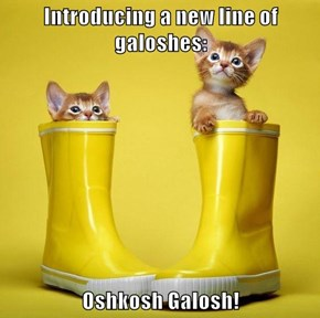 Introducing a new line of galoshes:  Oshkosh Galosh!