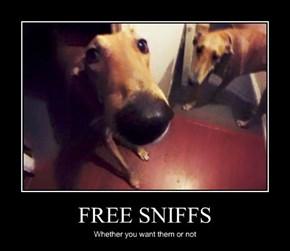 FREE SNIFFS