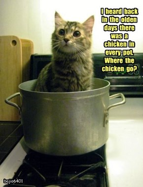 I  heard  back  in  the  olden  days  there  was  a  chicken  in  every  pot.   Where  the  chicken  go?