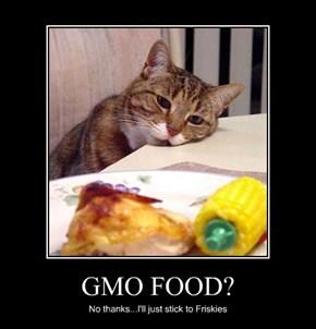 GMO FOOD?