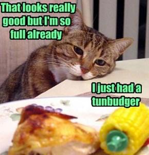 That looks really  good but I'm so      full already                                                   I just had a                                                tunbudger