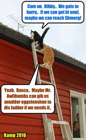 Bosco and Kibby make a determined effort to rescue Shmerg! Will dey be in time?! But how will teh Wurld be saved from teh Atomic Comet?